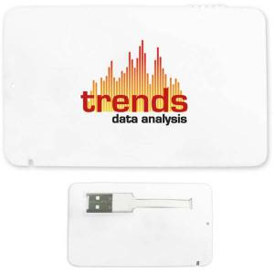 2 GB Full-Color Credit Card USB 2.0 Flash Drive